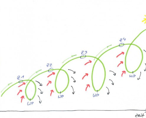 Entwicklungsspirale Spirale